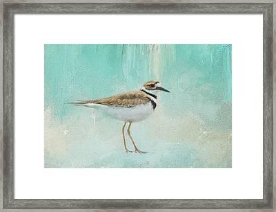 Little Seaside Friend Framed Print by Jai Johnson