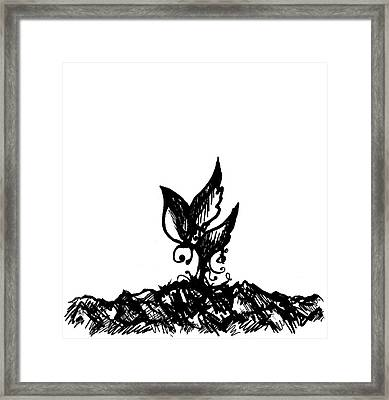 Little Sprout Framed Print by Rachel Christine Nowicki