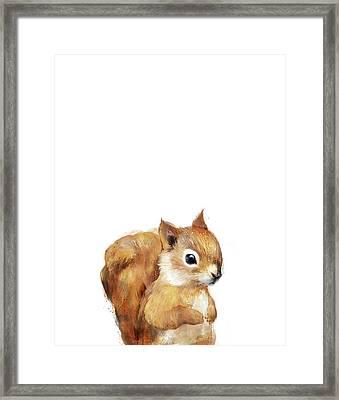 Little Squirrel Framed Print by Amy Hamilton