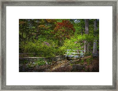 Little Stream Framed Print by Marvin Spates