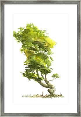 Little Tree 10 Framed Print by Sean Seal
