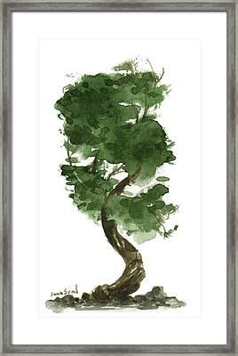 Little Tree 128 Framed Print by Sean Seal