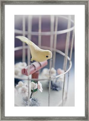 Little Yellow Bird Framed Print by Caitlyn  Grasso