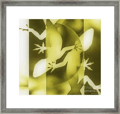 Lizards Coming And Going  Framed Print by Elizabeth McTaggart