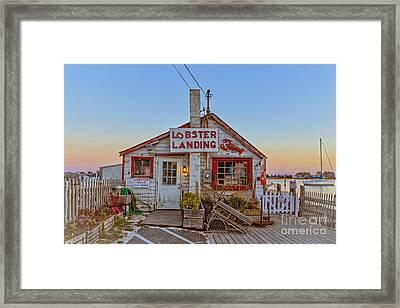 Lobster Landing Sunset Framed Print by Edward Fielding
