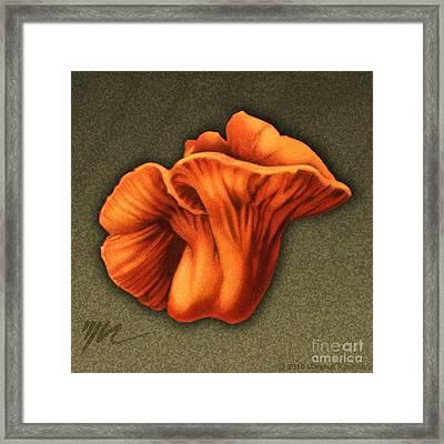 Lobster Mushroom Framed Print by Marshall Robinson