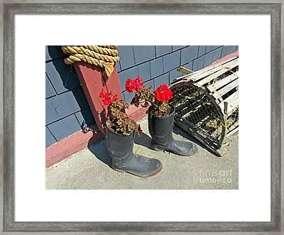 Lobster Trap Still Life Framed Print by John Malone