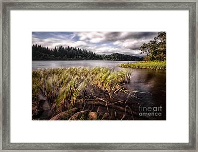 Loch Ard From The Reed Beds Landscape Framed Print by John Farnan