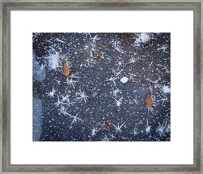 Locked In Ice Framed Print by Jean Noren