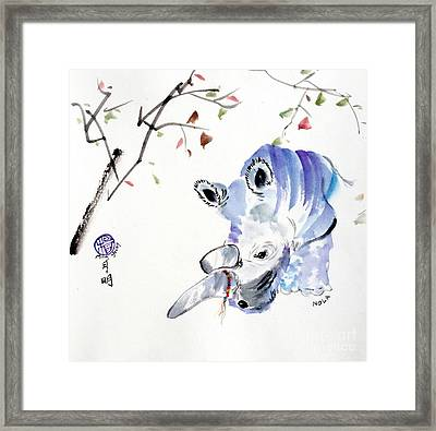 Lola At The San Diego Zoo Framed Print by Ming Yeung