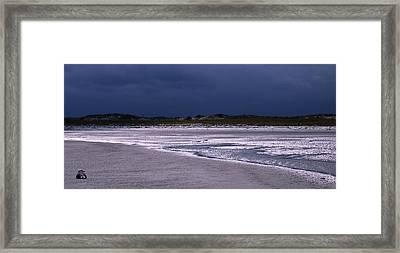 Lone Gull Awaits Storm Framed Print by Bill Driscoll
