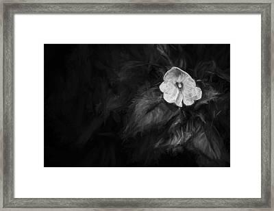 lonely 1 III Framed Print by Jon Glaser