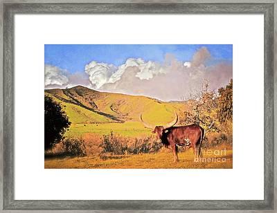 Lonesome Longhorn Ojai California Framed Print by Gus McCrea