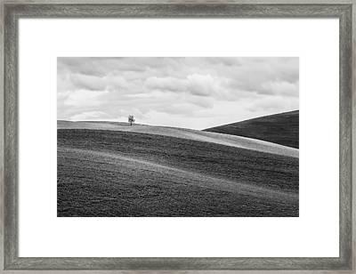 Lonesome Framed Print by Ryan Manuel