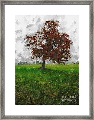 Lonesome Tree Framed Print by Jutta Maria Pusl