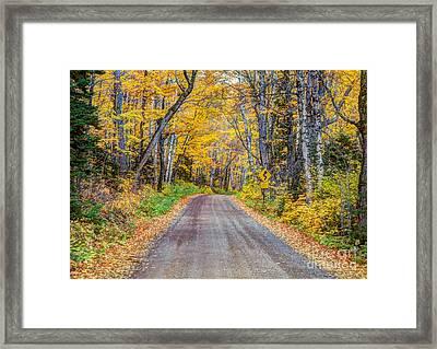 Long And Winding Autumn Roads North Shore Minnesota Framed Print by Wayne Moran