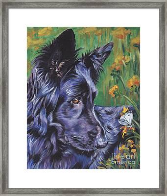 Long Hair Black German Shepherd Framed Print by Lee Ann Shepard