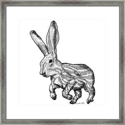 Longear Framed Print by Karl Addison