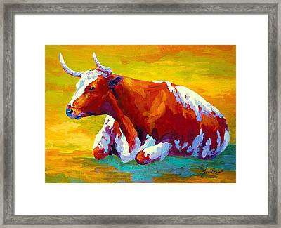 Longhorn Cow Framed Print by Marion Rose