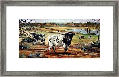 Longhorn Land Framed Print by Cynara Shelton