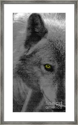 Look Into My Eye Framed Print by Debra     Vatalaro