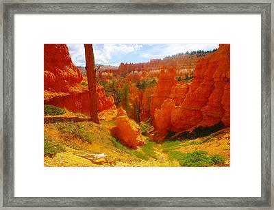 Looking Down In Bryce Framed Print by Jeff Swan