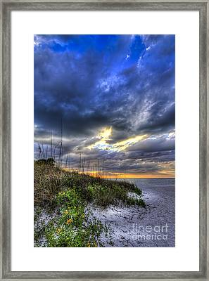 Looking For You Framed Print by Marvin Spates