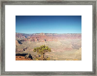 Looking Out Over The Canyon Framed Print by Kunal Mehra