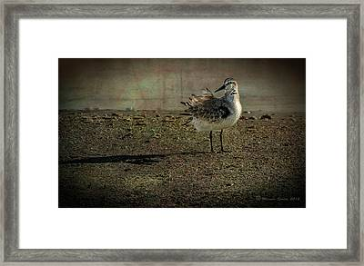 Looking Pretty Framed Print by Marvin Spates