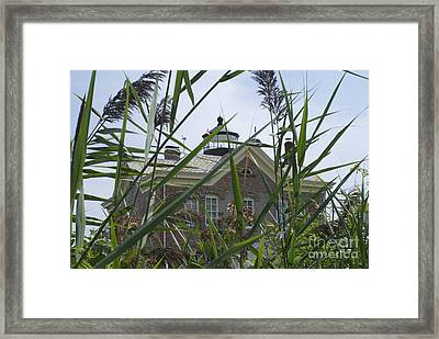 Looking Through To Lighthouse Framed Print by Lori Amway
