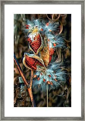 Lord Of The Dance Framed Print by Steve Harrington