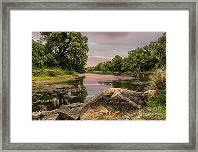 Lost Lake Framed Print by Tamyra Ayles