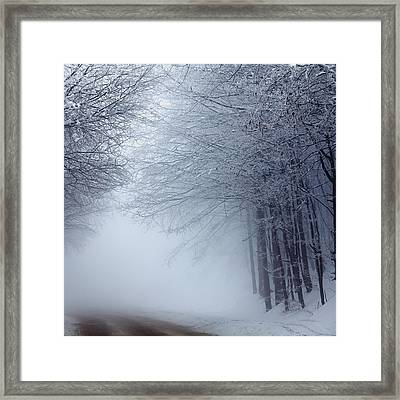Lost Way Framed Print by Evgeni Dinev