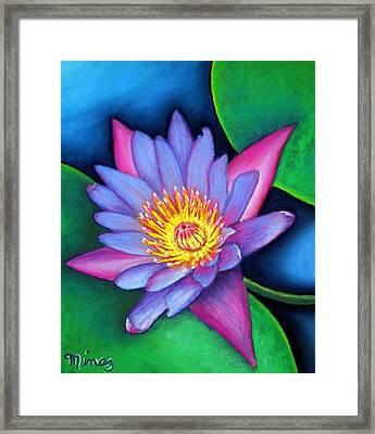 Lotus Divine Framed Print by Minaz Jantz