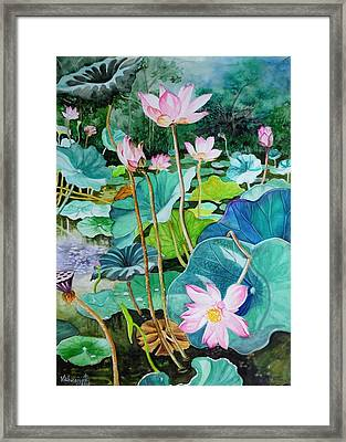 Lotus Pond 1 Framed Print by Vishwajyoti Mohrhoff