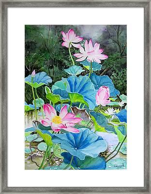 Lotus Pond 2 Framed Print by Vishwajyoti Mohrhoff