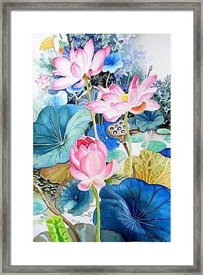 Lotus Pond 3 Framed Print by Vishwajyoti Mohrhoff