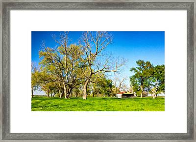 Louisiana Delta Farm - Paint Framed Print by Steve Harrington