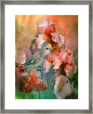 Love Among The Irises Framed Print by Carol Cavalaris