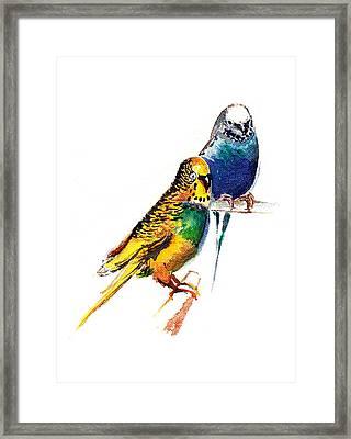 Love Birds Framed Print by Anil Nene