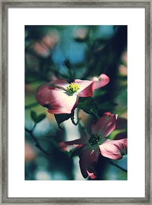 Love Is Such A Beautiful Thing Framed Print by Laurie Search