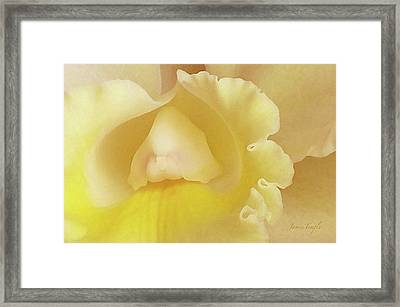 Love  Framed Print by James Temple