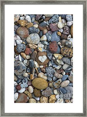 Love The Beach Framed Print by Tim Gainey