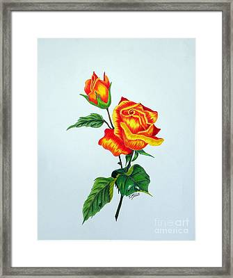 Lovely Rose Framed Print by Terri Mills