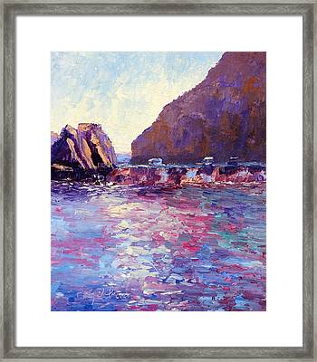 Lover's Cove Framed Print by Terry  Chacon
