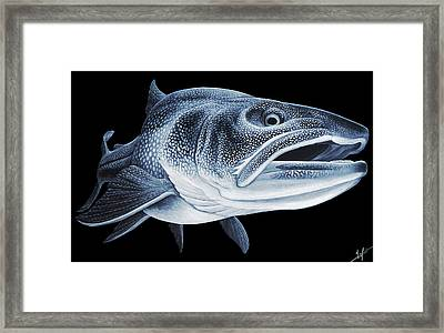 Low Light Laker Framed Print by Nick Laferriere