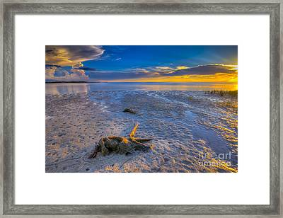 Low Tide Stump Framed Print by Marvin Spates