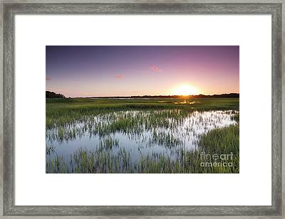 Lowcountry Flood Tide Sunset Framed Print by Dustin K Ryan