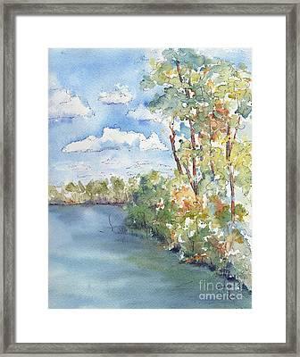 Lucien Lake Shoreline Framed Print by Pat Katz