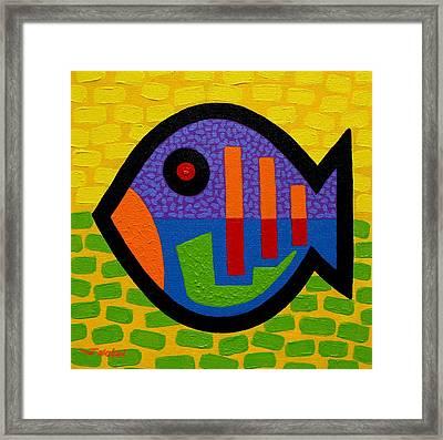 Lucky Fish II  Framed Print by John  Nolan
